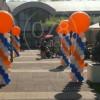 Europarcs-biesbosch-opendag-01.jpg