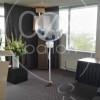 bruiloft-ballondecoratie-IMG_20170908_141932.jpg